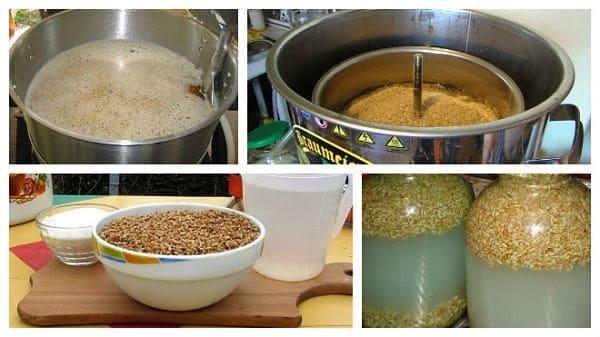 Самогон из зерна в домашних условиях без добавления дрожжей 410